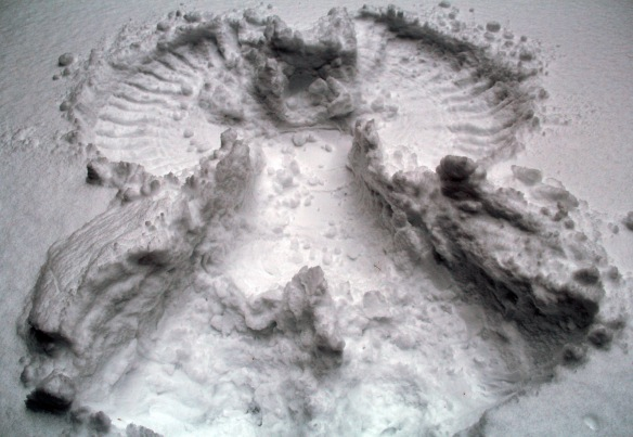 Snowangel7CLCresized